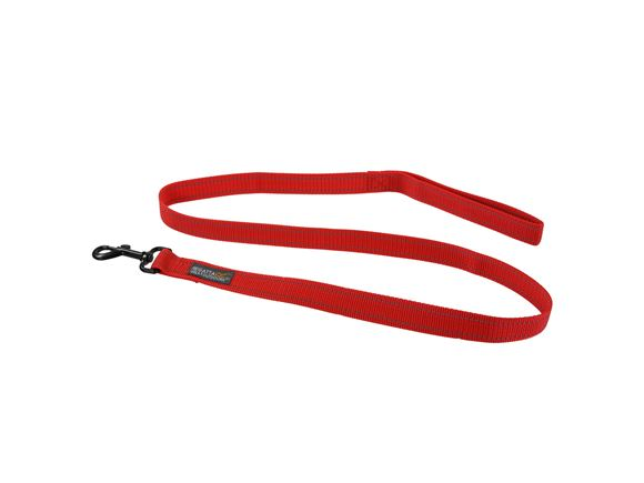 Regatta Reflective Dog Lead 2.5cmX120cm   product image