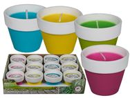 Citronella Candle in Coloured Terracotta Pot