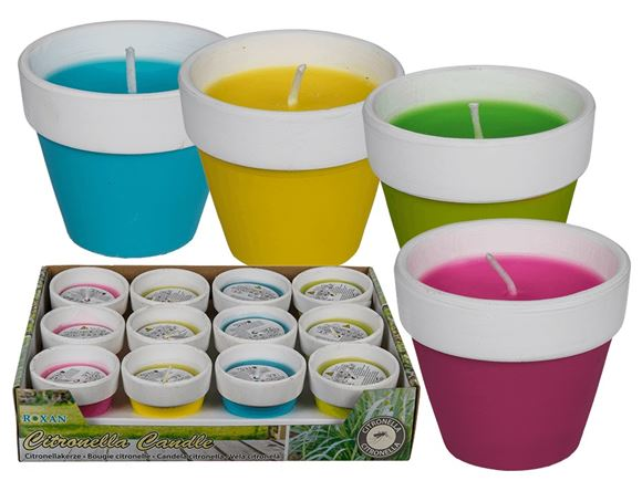 Citronella Candle in Coloured Terracotta Pot product image