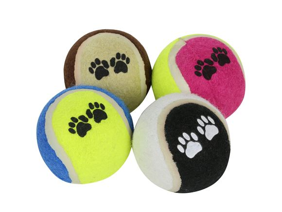 Regatta Fetch Ball Set 2.5''   product image